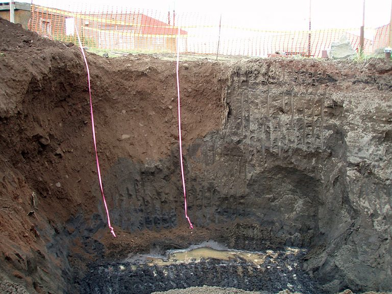 Removal of petroleum contaminated soil