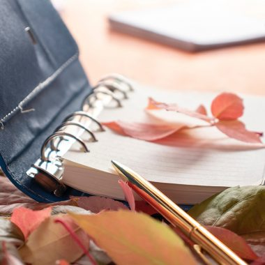 Book and leaves